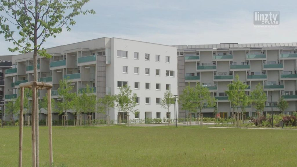 Grüner Lebensraum mitten in Linz
